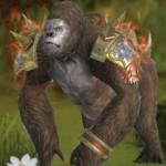 MMORPG『太極パンダ -DRAGON HUNTER-』新イベント開催、ペットガチャに新たなライド追加